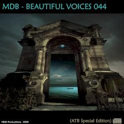 ATB Feat. Enigma - Enigmatic Encounter