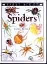 Cover of: Spiders (First sight)