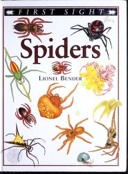 Cover of: Spiders (First sight) | Lionel Bender