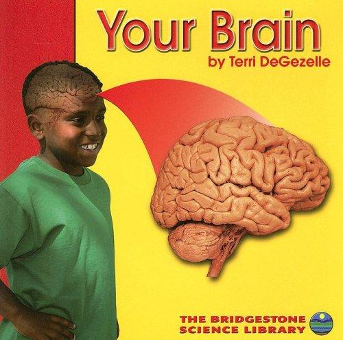 Your Brain (Your Body) by Terri Degezelle